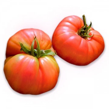 ficheros/productos/tomate rosa.jpg